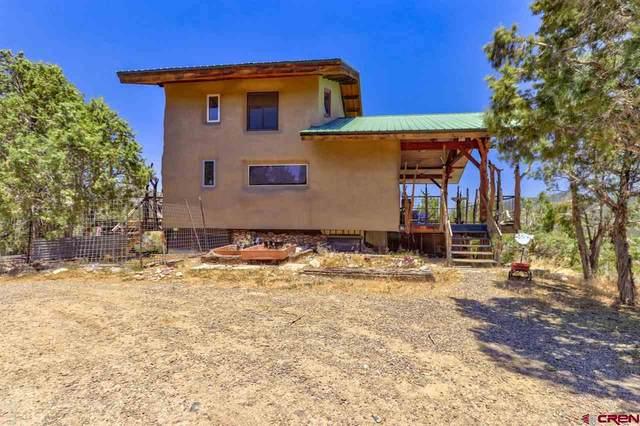 261 Pinon Hills Circle, Arboles, CO 81121 (MLS #771342) :: The Dawn Howe Group   Keller Williams Colorado West Realty