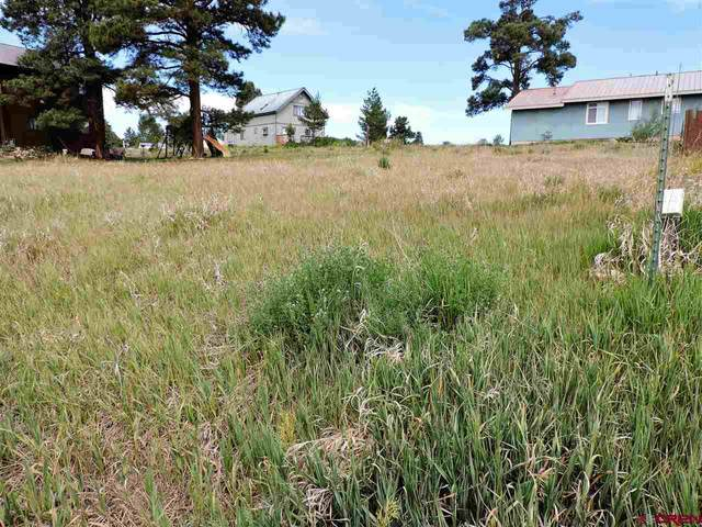 199 Sam Houston Avenue, Pagosa Springs, CO 81147 (MLS #771365) :: The Dawn Howe Group | Keller Williams Colorado West Realty