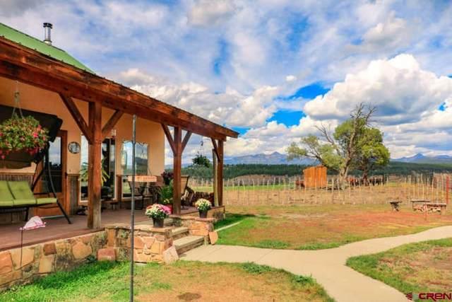 1200 Tierra Del Oro Drive, Pagosa Springs, CO 81147 (MLS #771433) :: The Dawn Howe Group | Keller Williams Colorado West Realty