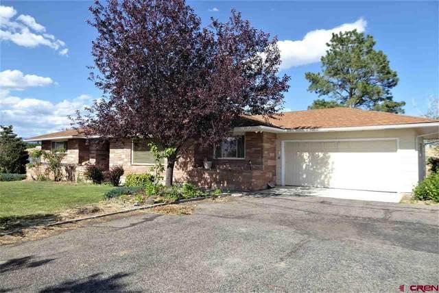 10034 Hwy 65, Austin, CO 81410 (MLS #771526) :: The Dawn Howe Group | Keller Williams Colorado West Realty