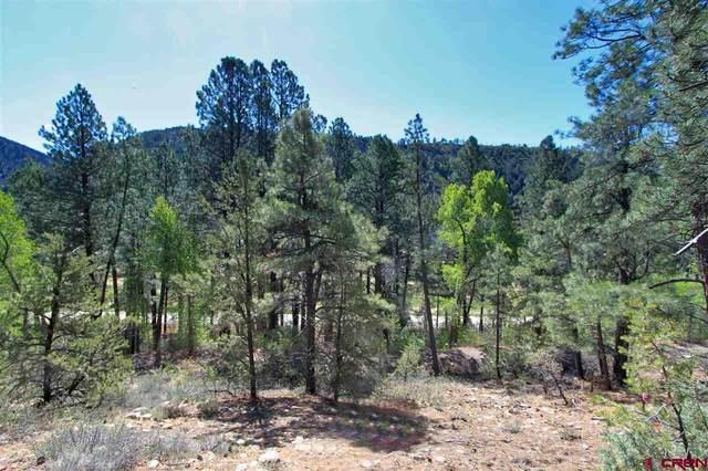 143 El Diente Drive, Durango, CO 81301 (MLS #771537) :: The Dawn Howe Group | Keller Williams Colorado West Realty
