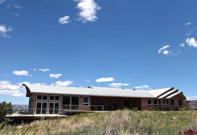 6455 County Rd 14, Del Norte, CO 81132 (MLS #771538) :: The Dawn Howe Group | Keller Williams Colorado West Realty
