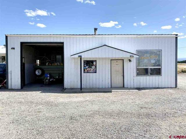 9009 6075 Road, Montrose, CO 81401 (MLS #771560) :: The Dawn Howe Group | Keller Williams Colorado West Realty