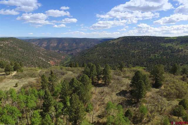 TBD Peninsula Drive, Placerville, CO 81430 (MLS #771580) :: The Dawn Howe Group | Keller Williams Colorado West Realty