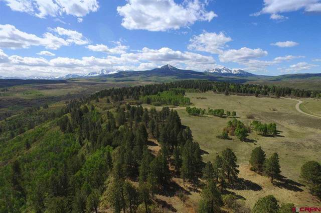Lot 28 Peninsula Drive, Placerville, CO 81430 (MLS #771584) :: The Dawn Howe Group | Keller Williams Colorado West Realty