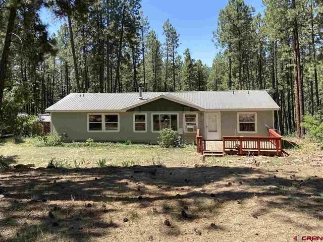 488 Deer Ridge Drive, Bayfield, CO 81122 (MLS #771591) :: The Dawn Howe Group | Keller Williams Colorado West Realty