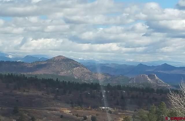 606 Perins Peak Lane, Durango, CO 81301 (MLS #771604) :: Durango Mountain Realty