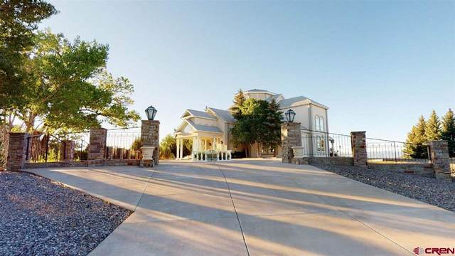16990 Wildwood Drive, Montrose, CO 81403 (MLS #771629) :: The Howe Group | Keller Williams Colorado West Realty