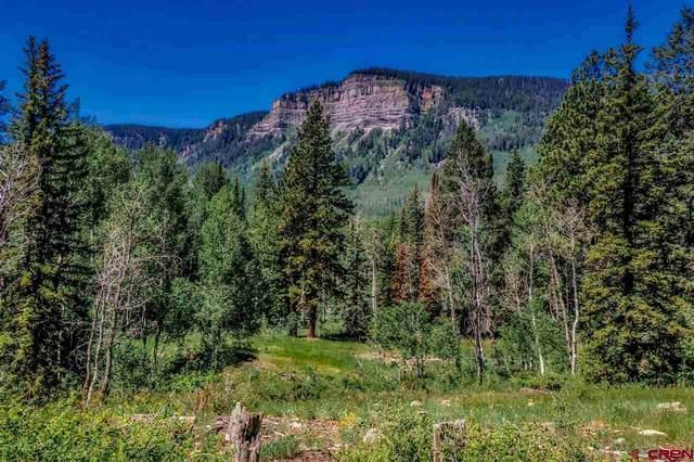 TBD Two Dogs Trail, Durango, CO 81301 (MLS #771637) :: Durango Mountain Realty