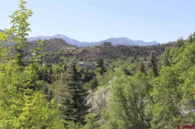TBD Rio Vista Circle, Durango, CO 81301 (MLS #771639) :: Durango Mountain Realty
