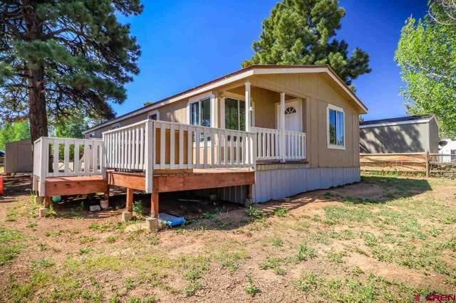 49 Highland Avenue, Pagosa Springs, CO 81147 (MLS #771666) :: The Dawn Howe Group | Keller Williams Colorado West Realty