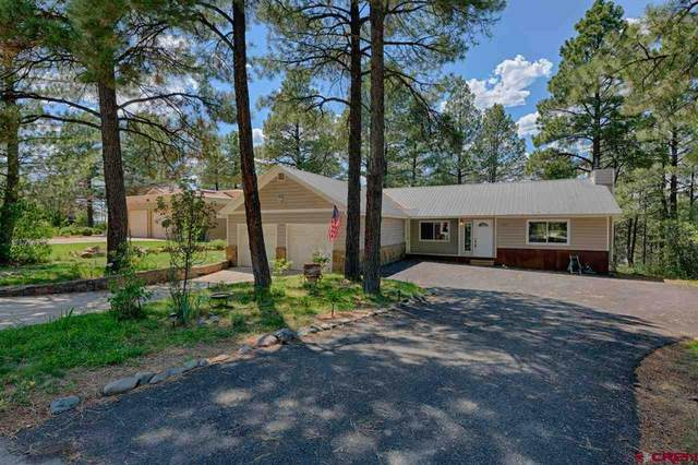 317 Handicap Avenue, Pagosa Springs, CO 81147 (MLS #771670) :: The Dawn Howe Group | Keller Williams Colorado West Realty
