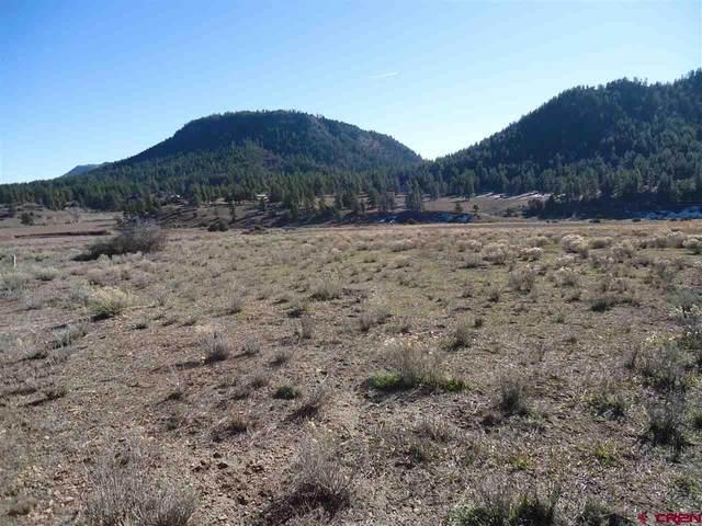Lot 2 W Highway 160, Pagosa Springs, CO 81147 (MLS #771671) :: The Dawn Howe Group | Keller Williams Colorado West Realty