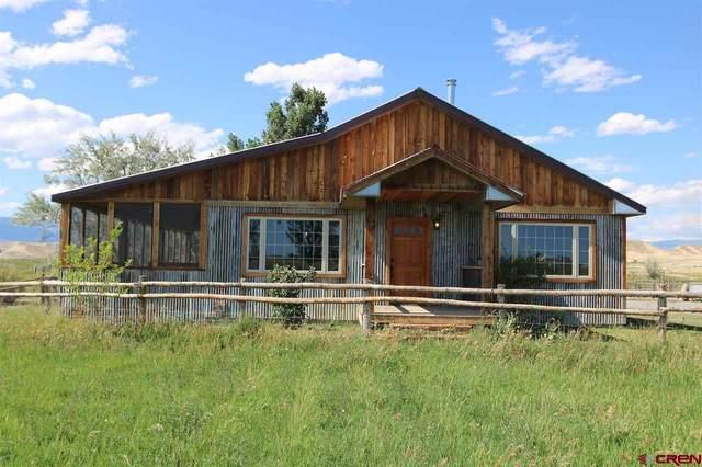 5996 2100 Road, Delta, CO 81416 (MLS #771677) :: The Dawn Howe Group | Keller Williams Colorado West Realty