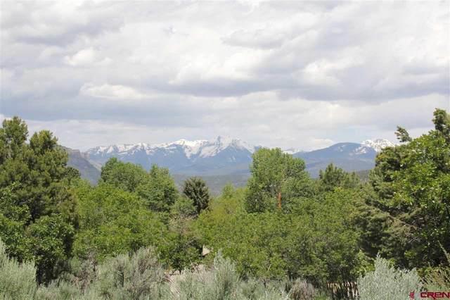 474 Hillcrest Drive, Durango, CO 81301 (MLS #771696) :: Durango Mountain Realty