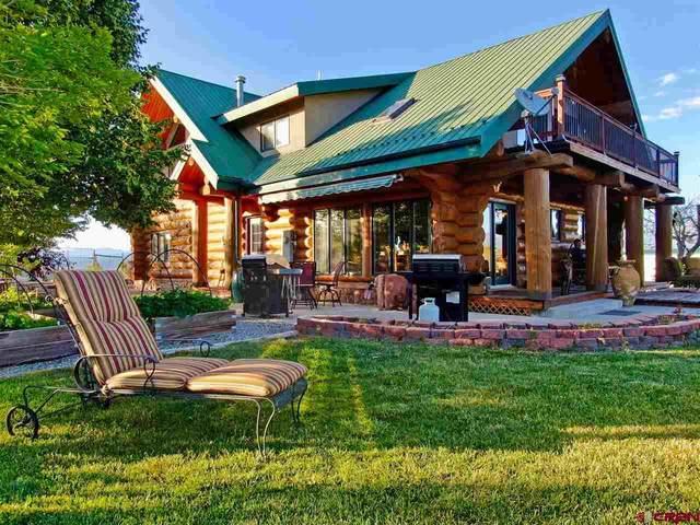 34016 B25 Road, Crawford, CO 81415 (MLS #771703) :: The Dawn Howe Group | Keller Williams Colorado West Realty