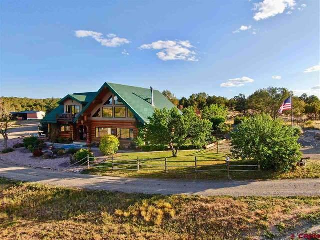 34016 B25 Road, Crawford, CO 81415 (MLS #771707) :: The Dawn Howe Group | Keller Williams Colorado West Realty