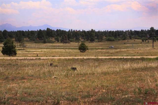 181 Prospect Boulevard, Pagosa Springs, CO 81147 (MLS #771708) :: The Dawn Howe Group | Keller Williams Colorado West Realty