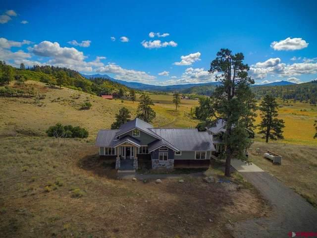 778 B County Road 382, Pagosa Springs, CO 81147 (MLS #771711) :: The Dawn Howe Group   Keller Williams Colorado West Realty