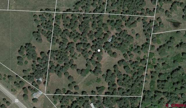 4286A Highway 84, Pagosa Springs, CO 81147 (MLS #771712) :: The Dawn Howe Group   Keller Williams Colorado West Realty