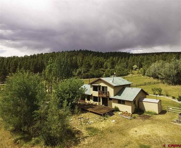 4216 Cr 240, Durango, CO 81301 (MLS #771714) :: Durango Mountain Realty