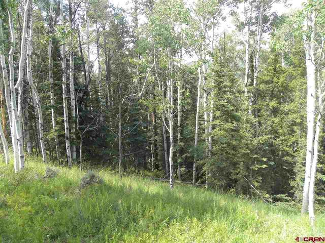 TBD Cemetery Road, Pitkin, CO 81241 (MLS #771728) :: The Howe Group   Keller Williams Colorado West Realty