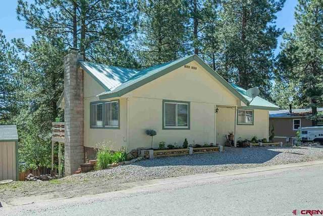 146 Moss Road Trail, Durango, CO 81303 (MLS #771823) :: Durango Mountain Realty