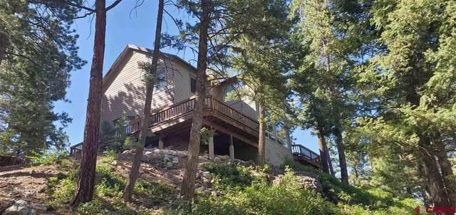 810 Spruce Mesa Drive, Durango, CO 81301 (MLS #771824) :: Durango Mountain Realty