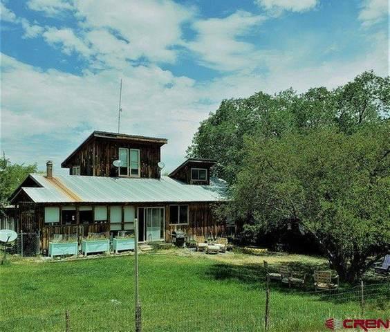 214 N Amelia Street, Ridgway, CO 81432 (MLS #771860) :: The Dawn Howe Group | Keller Williams Colorado West Realty