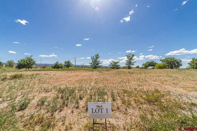 3301 Mahogany Drive, Montrose, CO 81401 (MLS #771918) :: The Dawn Howe Group | Keller Williams Colorado West Realty