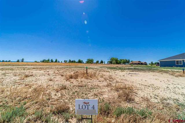 TBD (Lot 4) Scarlet Court, Montrose, CO 81401 (MLS #771922) :: The Dawn Howe Group | Keller Williams Colorado West Realty