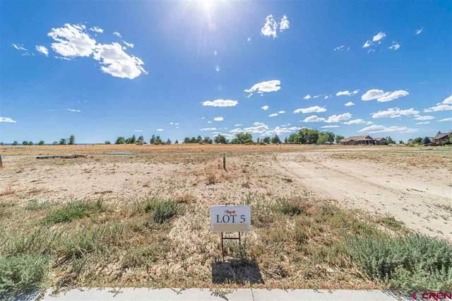 TBD (Lot 5) Scarlet Court, Montrose, CO 81401 (MLS #771923) :: The Howe Group   Keller Williams Colorado West Realty