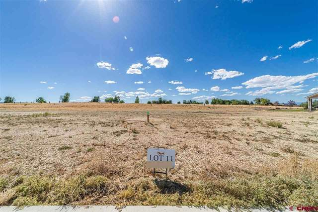 TBD (Lot 11) Scarlet Court, Montrose, CO 81401 (MLS #771928) :: The Dawn Howe Group | Keller Williams Colorado West Realty