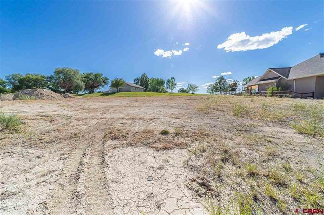 3610 Chestnut Drive, Montrose, CO 81401 (MLS #771943) :: The Dawn Howe Group | Keller Williams Colorado West Realty