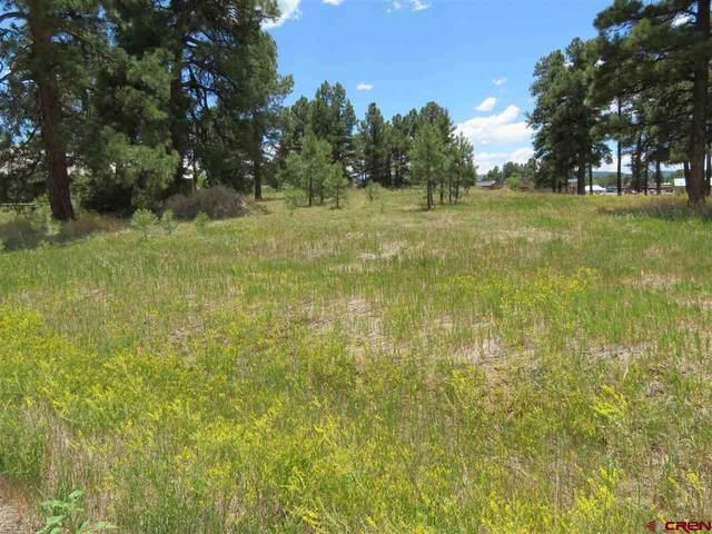 46 Eaton Drive, Pagosa Springs, CO 81147 (MLS #771953) :: The Dawn Howe Group | Keller Williams Colorado West Realty