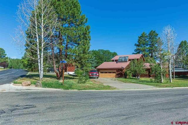 249 Aspen Drive, Durango, CO 81301 (MLS #771960) :: Durango Mountain Realty