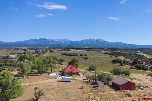 170 Cr 123, Hesperus, CO 81326 (MLS #772016) :: Durango Mountain Realty