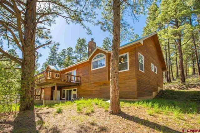 157 Ciervo Drive, Durango, CO 81301 (MLS #772019) :: Durango Mountain Realty