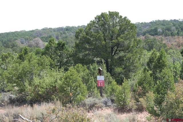 Lot 11 Elk Ranch Road, Glade Park, CO 81523 (MLS #772158) :: The Dawn Howe Group | Keller Williams Colorado West Realty