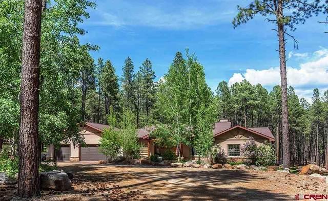 8833 Cr 501, Bayfield, CO 81122 (MLS #772193) :: The Dawn Howe Group   Keller Williams Colorado West Realty