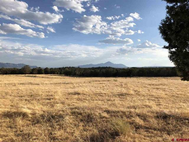Lot 11 TBD Road 28.8, Dolores, CO 81323 (MLS #772299) :: The Howe Group | Keller Williams Colorado West Realty