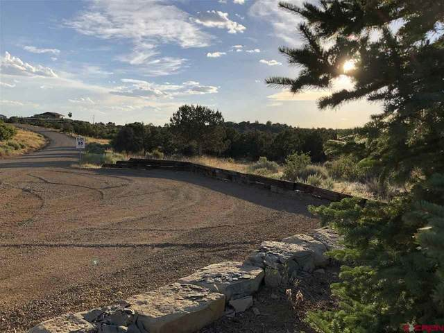 Lot 1A TBD Road 28.8, Dolores, CO 81323 (MLS #772300) :: The Howe Group | Keller Williams Colorado West Realty