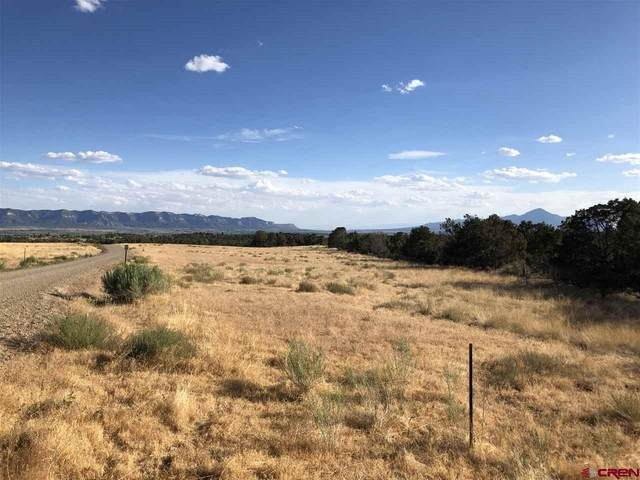 Lot 9 TBD Road 28.8, Dolores, CO 81323 (MLS #772301) :: The Howe Group | Keller Williams Colorado West Realty