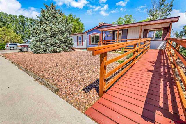 1873 Roxie Drive, Montrose, CO 81401 (MLS #772371) :: The Dawn Howe Group | Keller Williams Colorado West Realty
