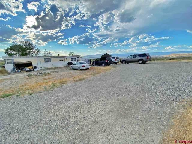 5057 Peach Valley Road, Delta, CO 81416 (MLS #772373) :: The Dawn Howe Group | Keller Williams Colorado West Realty