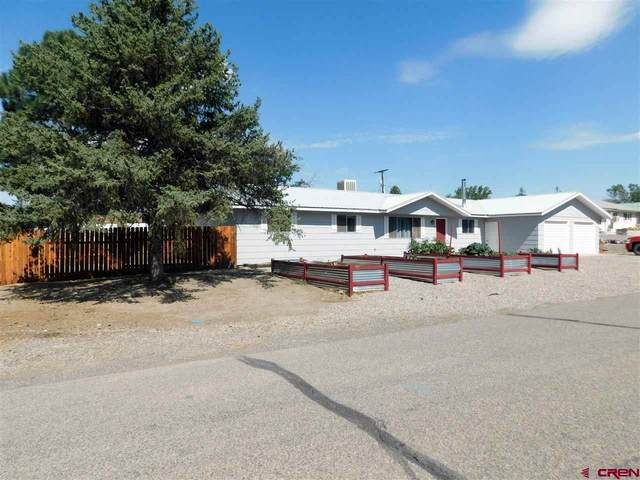 13165 Orchard Avenue, Eckert, CO 81418 (MLS #772391) :: The Dawn Howe Group | Keller Williams Colorado West Realty