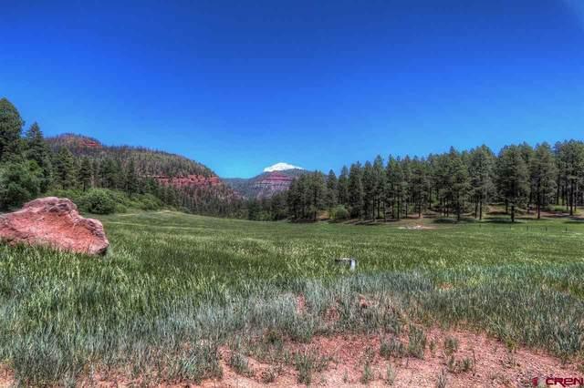 TBD High Meadows Ranch, Durango, CO 81301 (MLS #772405) :: Durango Mountain Realty