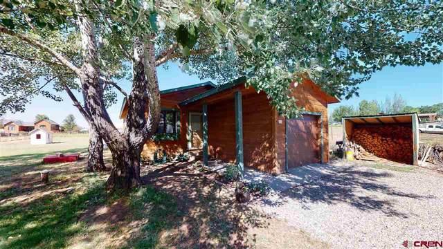 255 Valle Drive, Durango, CO 81303 (MLS #772408) :: Durango Mountain Realty