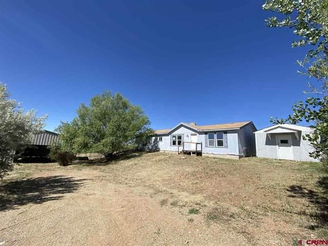 155 Vista Escondido Rd, Durango, CO 81303 (MLS #772414) :: Durango Mountain Realty