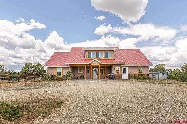 920 Miramonte Drive, Hesperus, CO 81326 (MLS #772492) :: The Dawn Howe Group | Keller Williams Colorado West Realty
